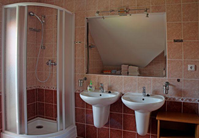 Villa in Frymburk - Frymburk SFD271