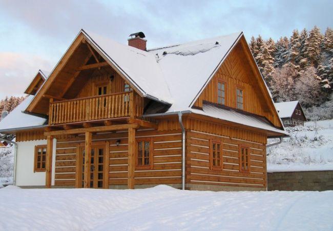 Villa in Vidochov - Stupna KSH230