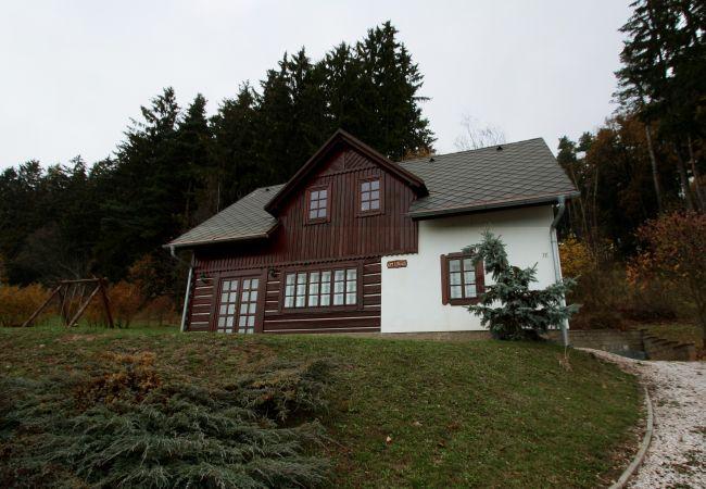 Villa in Vidochov - Stupna KSE510
