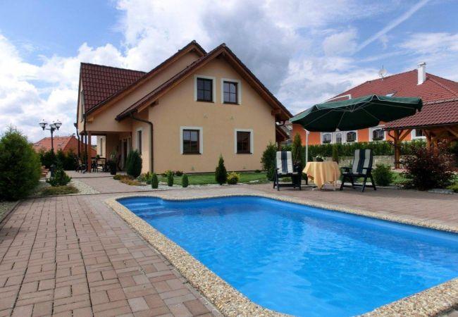 Villa in Frymburk - Frymburk SFW293