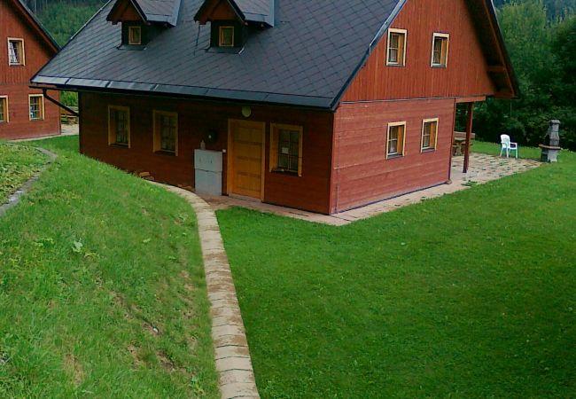 Villa in Žaclér - Zacler PrkennyDul  KZA021
