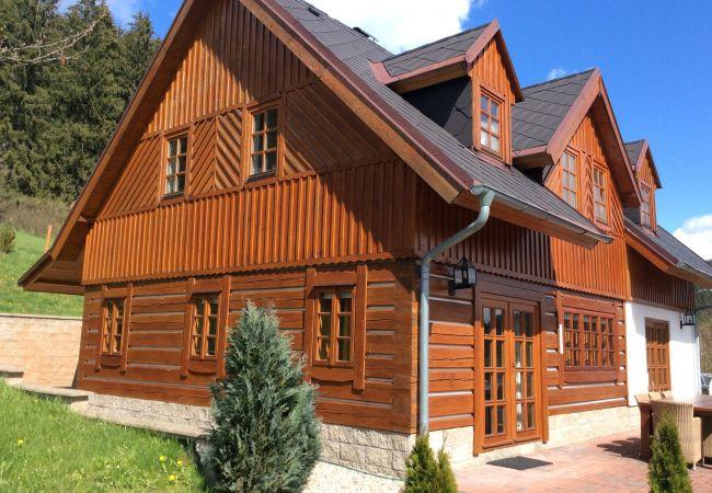 Villa in Vidochov - Stupna KSA450