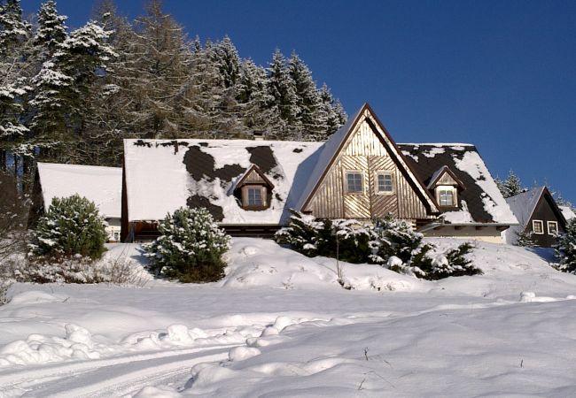 Villa in Vidochov - Stupna KSS180