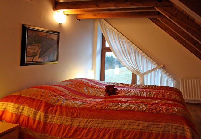 Villa in Žaclér - Zacler, Villa KZW240