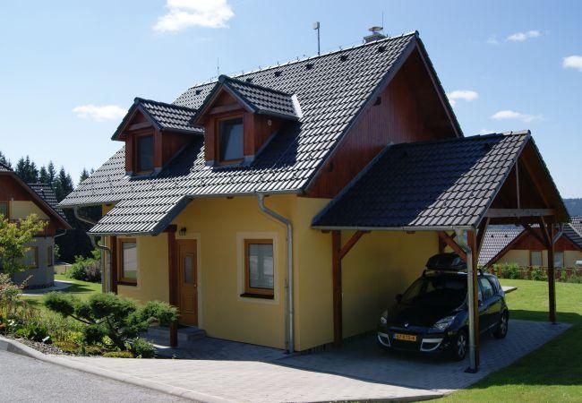 Villa in Lipno nad Vltavou - Vakantiehuis Alfa - Lipnomeer - Lipno nad Vltavou
