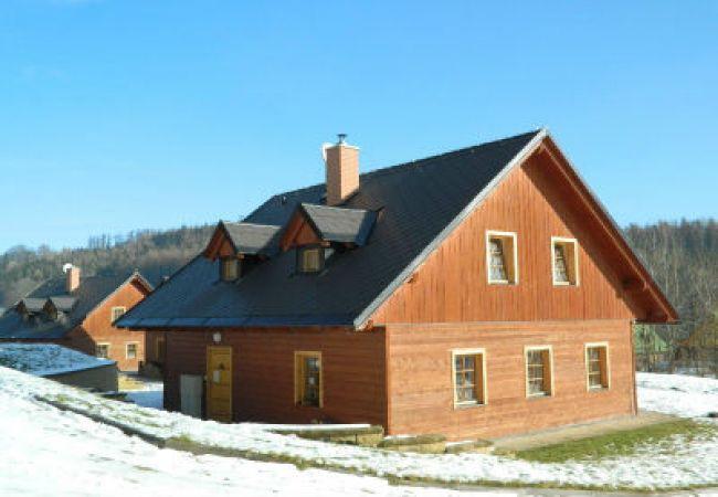 Villa in PrkennyDul - Vakantiehuis Zacler, aan de piste KZA023