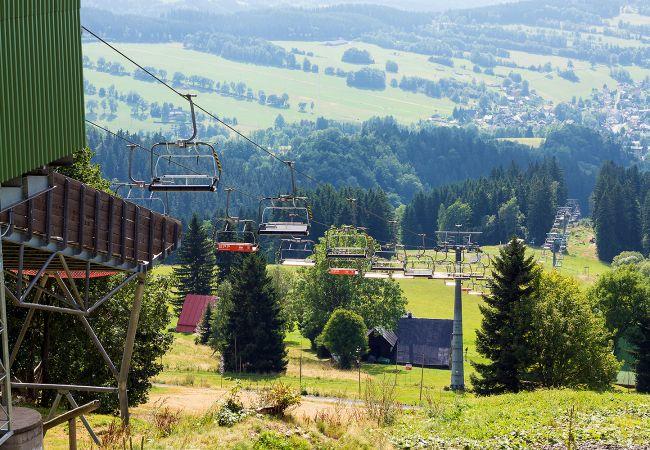 Appartement in Rokytnice nad Jizerou - KRP651