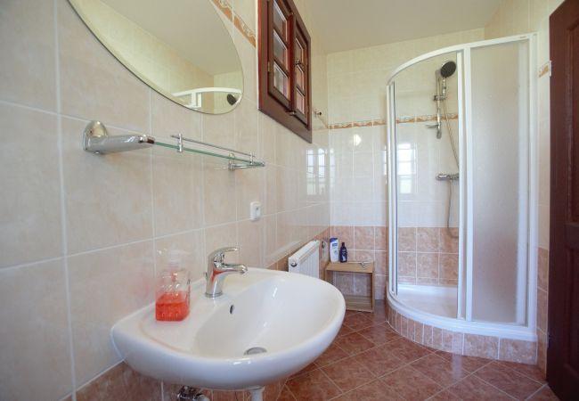Villa in Lucany nad Nisou - Lucany LLB320