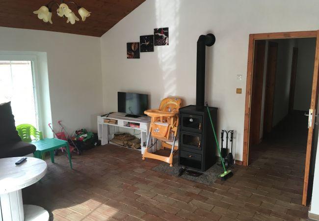 Villa in Sedlec-Prcice - Sedlec - SSH380