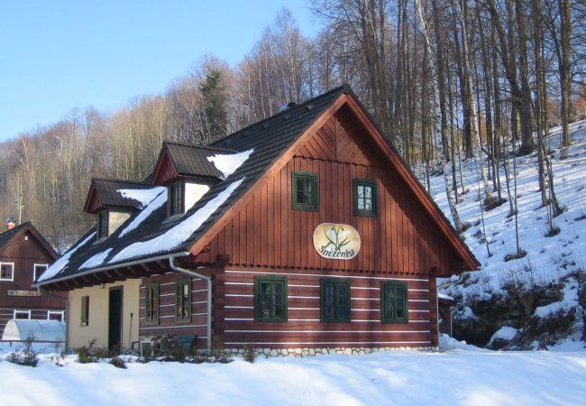 Villa in Rudník - Rudnik KRP460