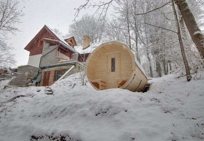 Villa in Rudník - Rudnik KRR060