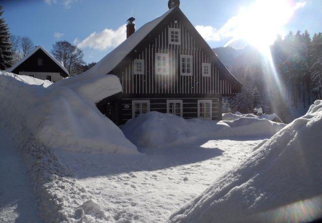 Villa in Albrechtice v Jizerských horách - Albrechtice LAT080
