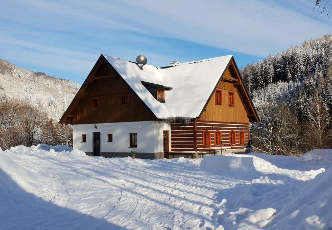 Villa in PrkennyDul - Zacler KZA280