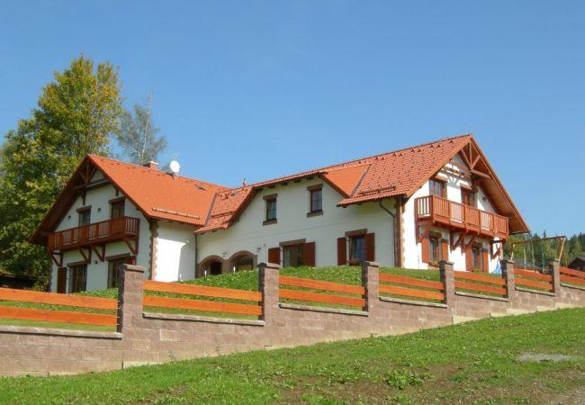 Villa in Lipno nad Vltavou - Lipno nad Vltavou - SLB120