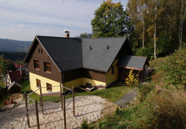 Villa in Albrechtice v Jizerských horách - Albrechtice LAQ016