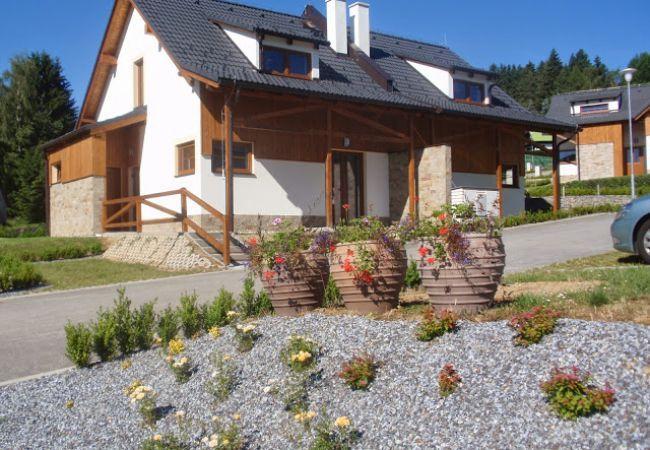 Villa à Lipno nad Vltavou - SFRL-VB5 Residence Lipno