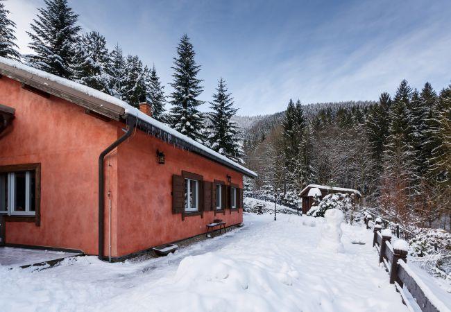 Villa in Pstruží - Pstruzi MPTM562