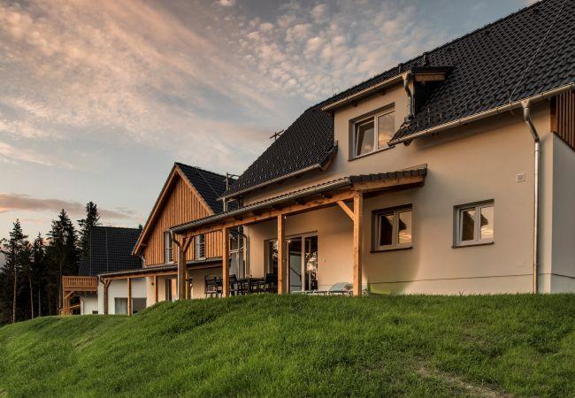Villa in Frymburk - Lakeside Village SLLV-174P