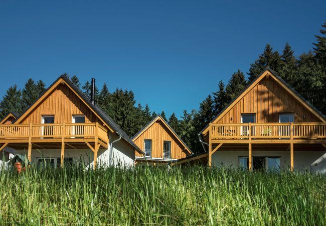 Villa in Frymburk - Lakeside Village SLLV-H8